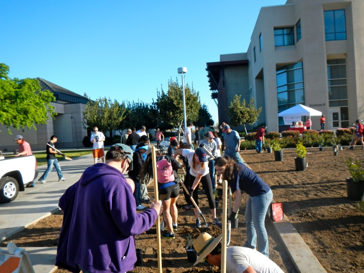 Working hard at the water-wise garden in front of the Science II building! Photo Credit: Richter Center S.E.R.V.E. committee