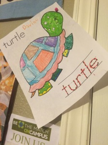 The beautiful turtle colored and autographed by Davine.